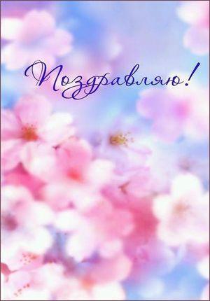 Сиренево розовые цветы 79